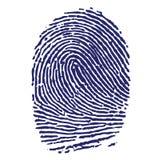 Impronta digitale blu Immagine Stock