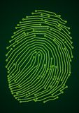 Impronta digitale di Digitahi Immagine Stock