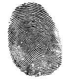 Impronta digitale perfetta del pollice Fotografia Stock
