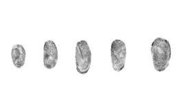 impronte digitali su un fondo bianco Immagini Stock Libere da Diritti
