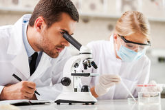Improving modern medicine. Two young scientists making experiments while sitting in the laboratory Stock Photos