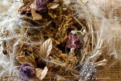 Improwizujący ikebany gniazdeczko Zdjęcia Royalty Free