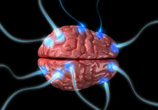 Impulses in brain Royalty Free Stock Photography