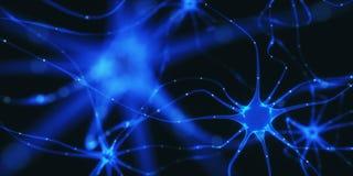 Impulsi elettrici dei neuroni Fotografia Stock Libera da Diritti