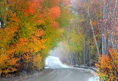 Impulsión brumosa del otoño Fotos de archivo