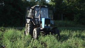 Impulsiones del tractor sobre el campo de la patata Cosechando las patatas con usar el tractor metrajes