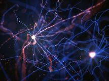 Impulsions électriques de neurones Images libres de droits