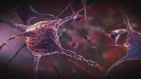 Impulso del neurone royalty illustrazione gratis