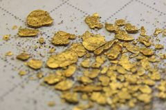 Impure small golden nuggets lying on a paper becoming blurry towards the bottom of the photo royalty free stock images