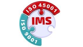 IMS Sistema de gestión integrado del ISO La marca de verificación bajo la forma de rompecabezas libre illustration