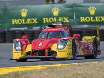 IMSA: 25 januari Rolex 24 Uren in Daytona Royalty-vrije Stock Foto