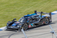 IMSA: Juni 03 Chevrolet sportbilklassiker Fotografering för Bildbyråer