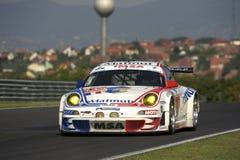 IMSA Prestaties Porsche Royalty-vrije Stock Afbeelding