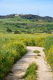 Imtarfa countryside, Malta. Royalty Free Stock Image