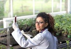 Inżynier pracuje na rośliny ochronie Zdjęcie Stock