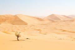 Free In Oman Old Desert Rub Al Khali The Empty Quarter And Outdoor Stock Photo - 70950950