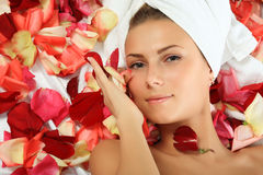 In Rose Petals Stock Images