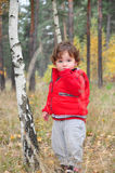 In The Forest Stands Near The Birch Is A Little Curly-haired Gi Stock Images