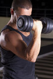 In The Gym Royalty Free Stock Images