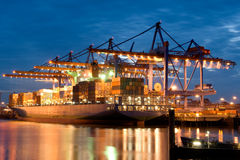 Free In The Harbour Stock Photography - 3014122