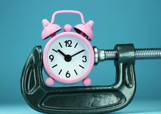 In The Pink Of Clamp Royalty Free Stock Photography