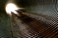 Free In The Sewers Stock Photos - 15009973