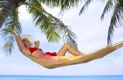 Free In Tropic Royalty Free Stock Photos - 4918438