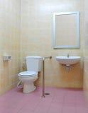 inaktiverad toalett Royaltyfri Foto