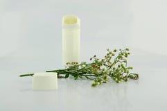 Inalatore di asma e fiore di erba Fotografia Stock Libera da Diritti
