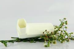 Inalatore di asma e fiore di erba Immagini Stock