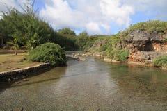 Inarajan自然水池 库存照片