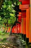 Inari daisha Arkivbild