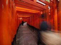inari fushimi Στοκ φωτογραφίες με δικαίωμα ελεύθερης χρήσης