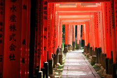 Inari torii gates - Kyoto - Japan. Inari torii gates - Fushimi Inari Shrine at Kyoto - Japan Stock Photos