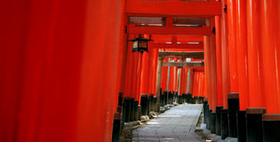 Inari torii gates - Kyoto - Japan. Inari torii gates - Fushimi Inari Shrine at Kyoto - Japan Stock Image