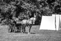 Inbördeskriget som är beträffande-enactement i Duncans, maler, CA, USA Arkivfoto