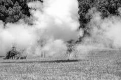 Inbördeskriget som är beträffande-enactement i Duncans, maler, CA, USA Fotografering för Bildbyråer