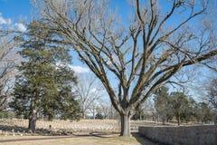 Inbördeskrigkyrkogård Arkivfoton