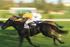 Inbaileysfootsteps in horse racing in Prague Stock Images