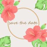 Inbjudan- eller bröllopkortet med abstrakt bakgrund med hibiskusen blommar vektor illustrationer
