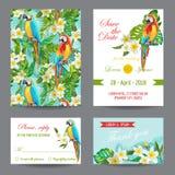 Inbjudan- eller hälsningkortuppsättning - tropisk fågel- och blommadesign vektor illustrationer