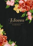 Inbjudan med färgrika blommor Royaltyfri Fotografi