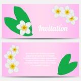Inbjudan med tropisk plumeria på en rosa färg Arkivfoto