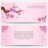 Inbjudandesignmall som blommar Sakura på rosa färger Royaltyfria Bilder