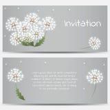 Inbjudankort med maskrosor på grå bakgrund Arkivfoton