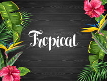 Inbjudankort med tropiska sidor och blommor Gömma i handflatan filialer, fågel av paradisblomman, hibiskus stock illustrationer