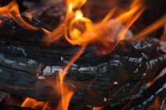 Incêndio ardente Fotos de Stock Royalty Free
