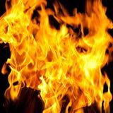Incêndio ardente colorido Imagem de Stock