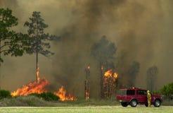 Incêndio de escova, Florida Fotos de Stock