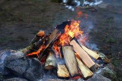 Incêndio de madeira do acampamento fotografia de stock royalty free